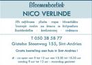 Nico-Verlinde